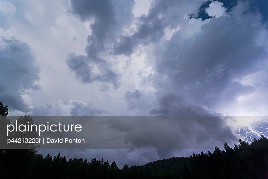 lightning bolt and storm clouds over forest at twilight; new mexico, usa