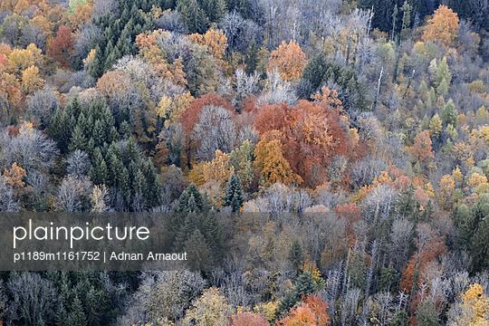 Franche-Comté, Doubs - p1189m1161752 von Adnan Arnaout