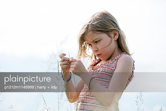 Mädchen in der Wiese bastelt mit Grashalmen und Wildblumen - p1212m1145999 von harry + lidy