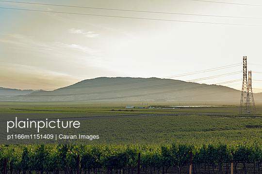 p1166m1151409 von Cavan Images