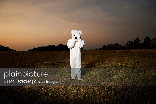 Person In Bear Suit In Field