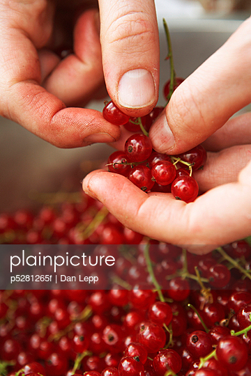 Hands cleaning redcurrants close-up