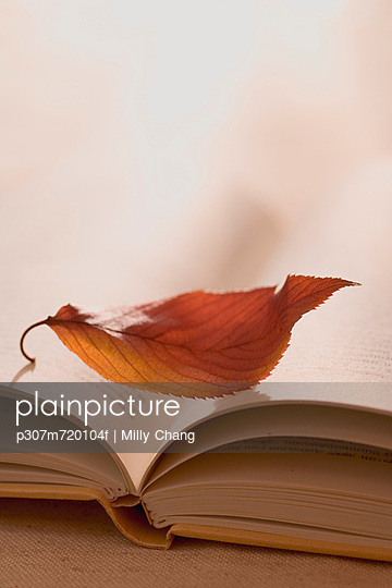 Dry leaf and book