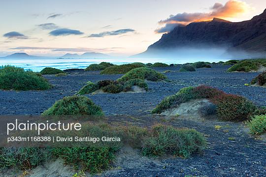 p343m1168388 von David Santiago Garcia