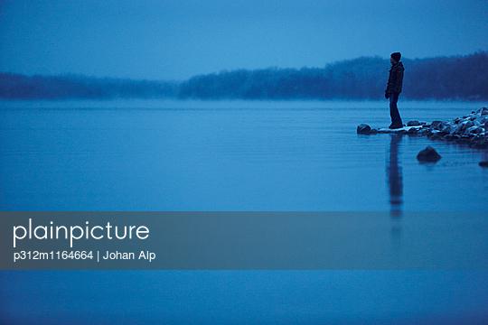 p312m1164664 von Johan Alp
