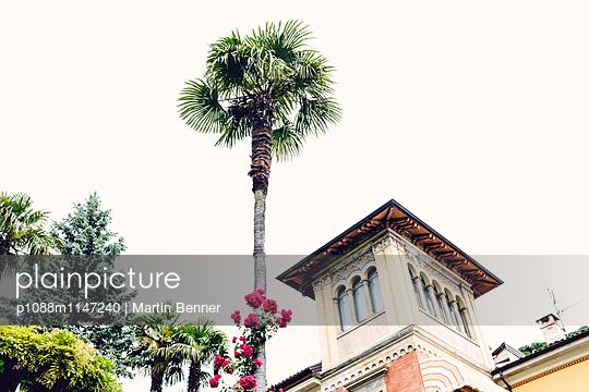 Turm mit Palme - p1088m1147240 von Martin Benner
