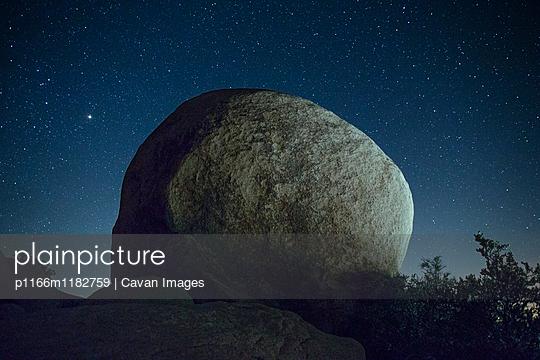 p1166m1182759 von Cavan Images