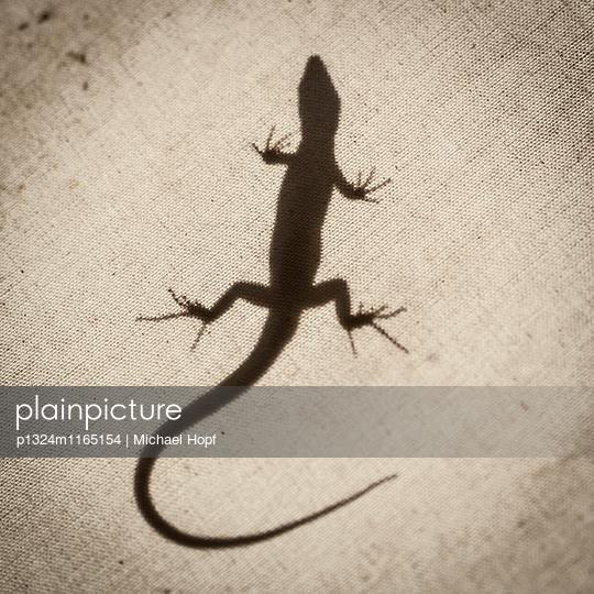 Silhouette eines Salamanders - p1324m1165154 von michaelhopf
