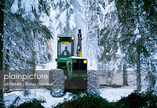 Man driving crane in snow-covered forest