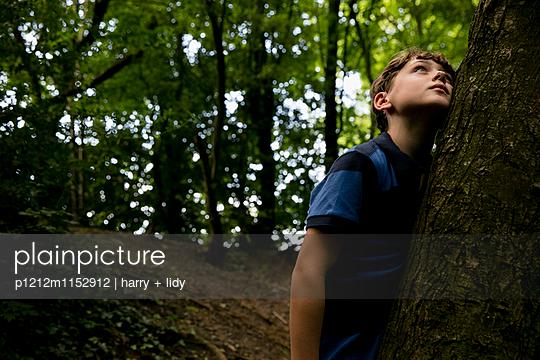 Junge lehnt an einem Baum im Wald - p1212m1152912 von harry + lidy