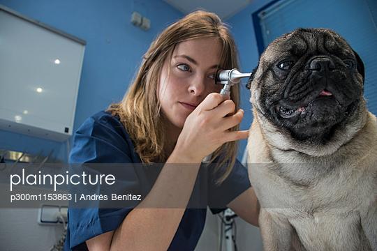 p300m1153863 von Andrés Benitez