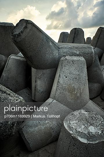 Tetrapoden - p706m1169929 von Markus Tollhopf