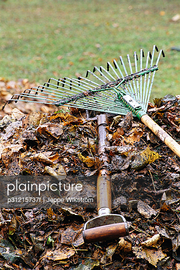 Rake and leaves in a garden.