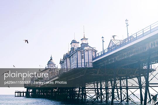 p429m1155537 von Janeycakes Photos
