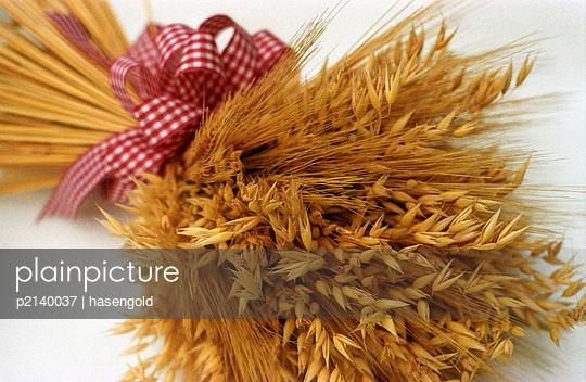 Bouquet of barley