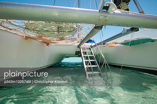 A drop-down aluminum staircase leads up to the deck of a catamaran boat.