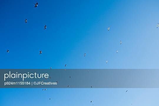 p924m1155184 von ©JFCreatives