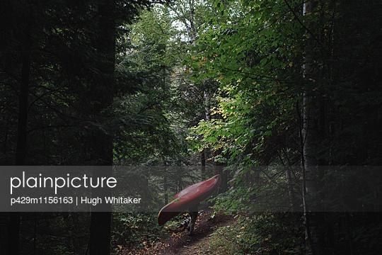 p429m1156163 von Hugh Whitaker