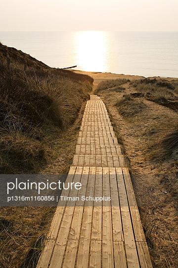Abendstimmung, Holzsteg durch die Dünen, Rotes Kliff, Kampen, Insel Sylt, Schleswig-Holstein, Deutschland - p1316m1160856 von Tilman Schuppius
