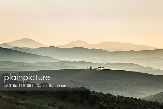 Landschaft bei Pienza, Val d`Orcia, Provinz Siena, Toskana, Italien, UNESCO Welterbe - p1316m1161061 von Daniel Schoenen