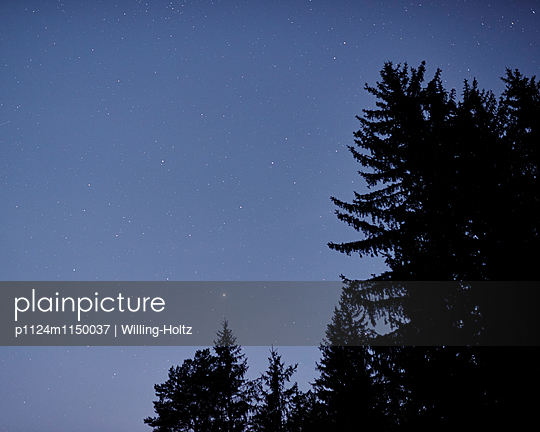 Sternenhimmel  - p1124m1150037 von Willing-Holtz