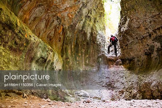 p1166m1150356 von Cavan Images