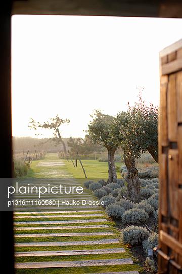 Holzbohlen zeigen den Weg vom Hotel zum Strand, A-dos-Cunhados, Costa de Prata, Portugal - p1316m1160590 von Hauke Dressler