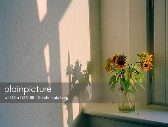 Sonnenblumen_2 - p1145m1153188 von Kerstin Lakeberg