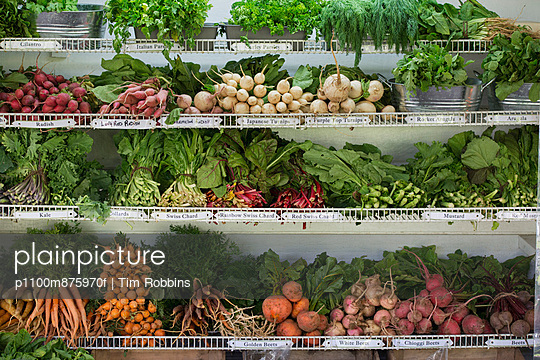 A farm stand with rows of freshly picked vegetables for sale.