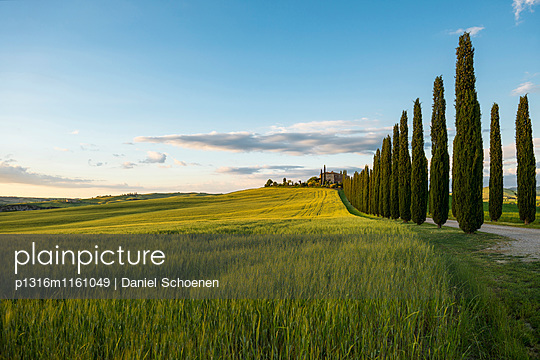 Landschaft bei San Quirico d`Orcia, Val d`Orcia, Provinz Siena, Toskana, Italien, UNESCO Welterbe - p1316m1161049 von Daniel Schoenen