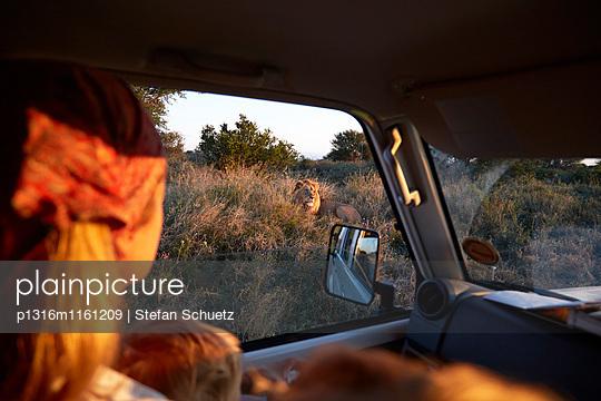 Mutter und Sohn beobachten Löwe aus einem Auto, Kalahari, Botswana - p1316m1161209 von Stefan Schuetz