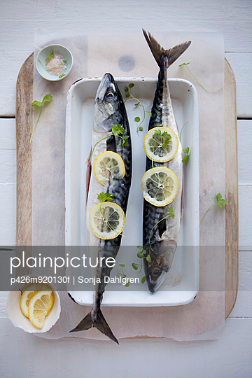 Directly above shot of fishes garnished with lime slices