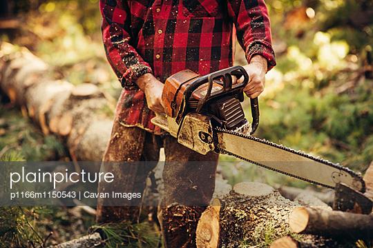 p1166m1150543 von Cavan Images