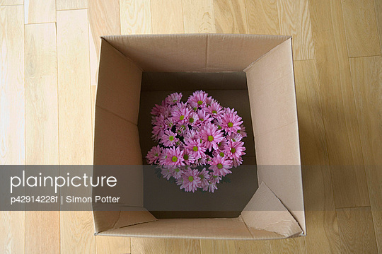 Flowers in cardboard box