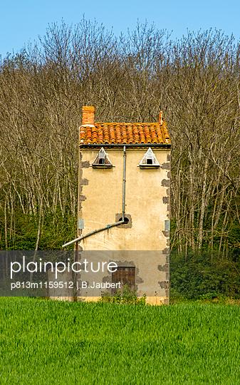 Taubenschlag auf dem Land - p813m1159512 von B.Jaubert