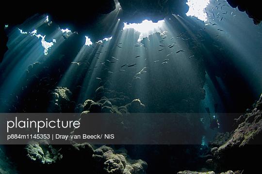 p884m1145353 von Dray van Beeck/ NiS
