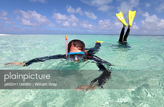 p652m1166960 von William Gray
