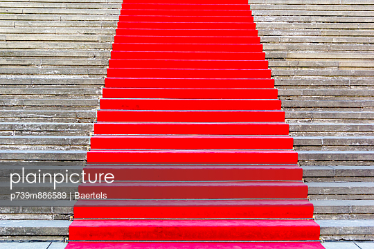 Red carpet IV