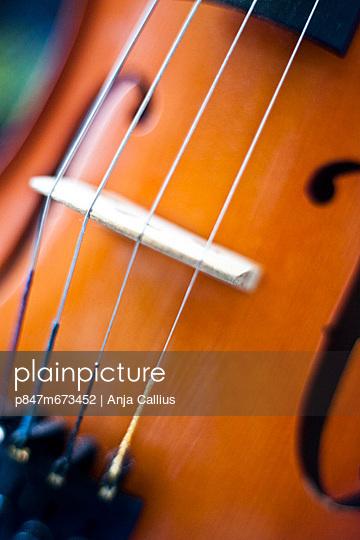 Close up ofstrings andbridge on thecello, musical instruments (Närbild på strängar och bro på cello, musikinstrument)