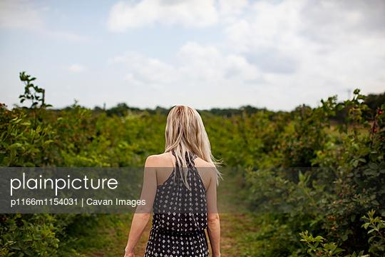 p1166m1154031 von Cavan Images