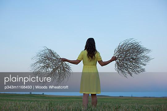 p343m1168493 von Woods Wheatcroft