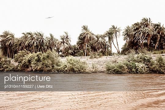 Nil - p1310m1159227 von Uwe Ditz