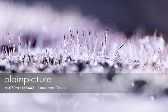 p1072m1163443 von Laurence Chellali