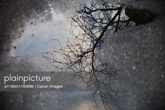 p1166m1150686 von Cavan Images