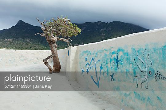 Mauer mit maritimen Motiven verziert - p712m1159984 von Jana Kay