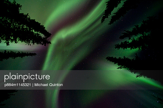 p884m1145321 von Michael Quinton