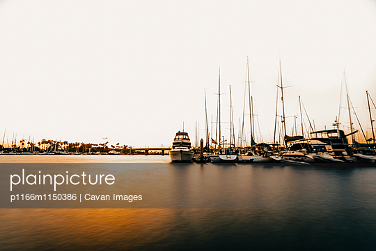 p1166m1150386 von Cavan Images