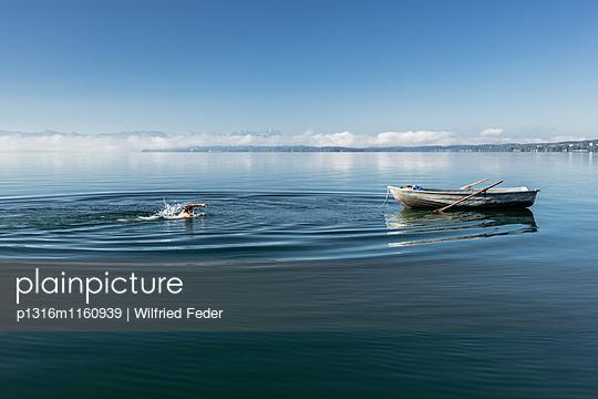 Mann schwimmt im Starnberger See, Alpen mit Zugspitze im Morgennebel, Berg, Oberbayern, Bayern, Deutschland - p1316m1160939 von Wilfried Feder