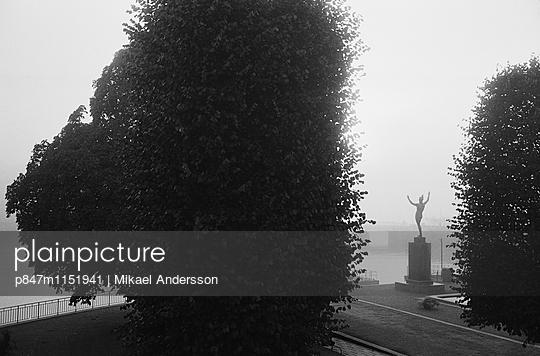 p847m1151941 von Mikael Andersson