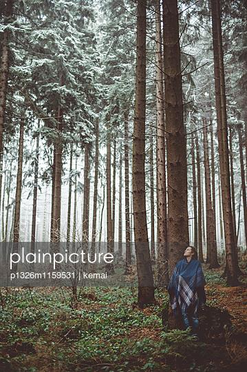 Waldeinsamkeit - p1326m1159531 von kemai